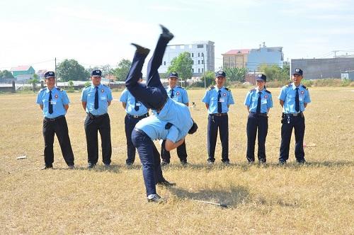 Tập huấn kỹ thuật, chiến thuật và võ thuật